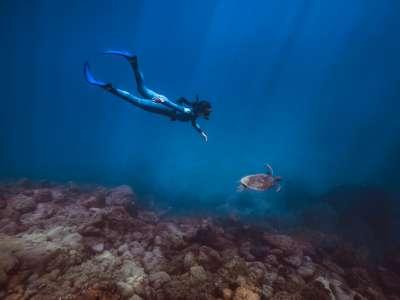Freediving Special - Maio 2021